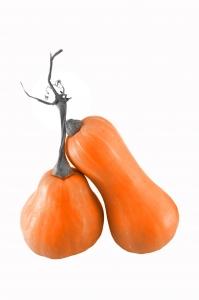 pumpkin1-1432015-m